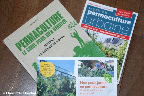 Comment bien débuter la permaculture ?