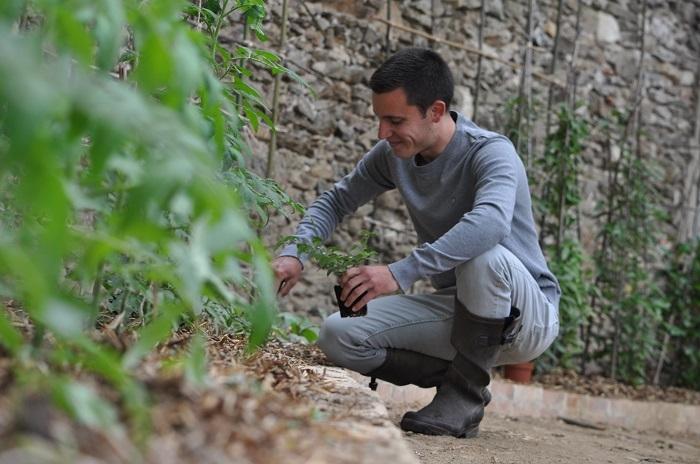 Comment ça marche la permaculture ?