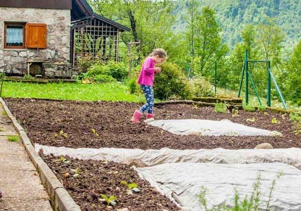 Comment debuter un potager en permaculture ?