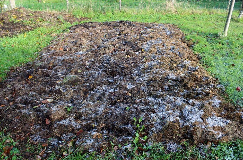 Comment fertiliser une terre pauvre ?