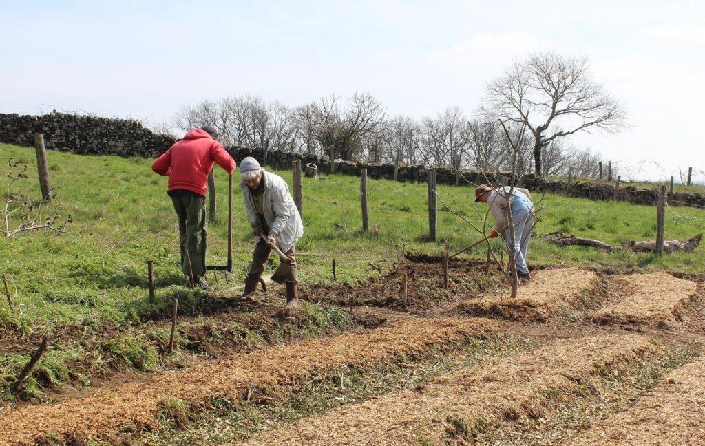 Comment préparer le sol pour la permaculture ?