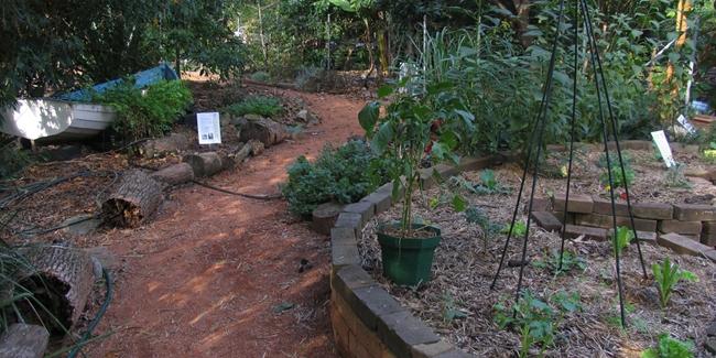 Comment préparer son terrain pour la permaculture ?
