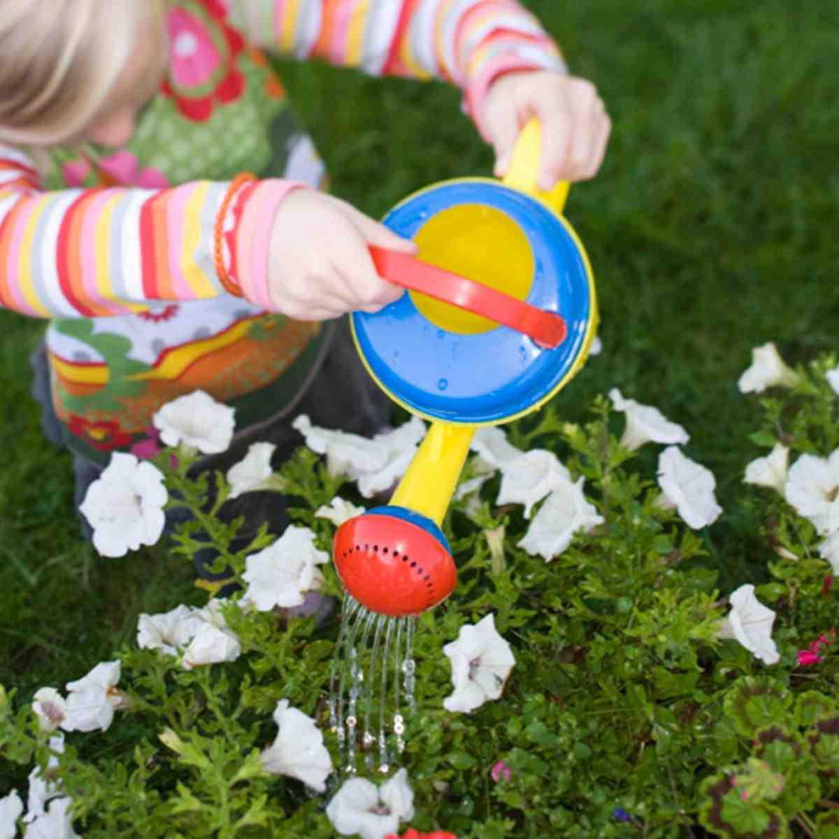 Comment arroser correctement le jardin?