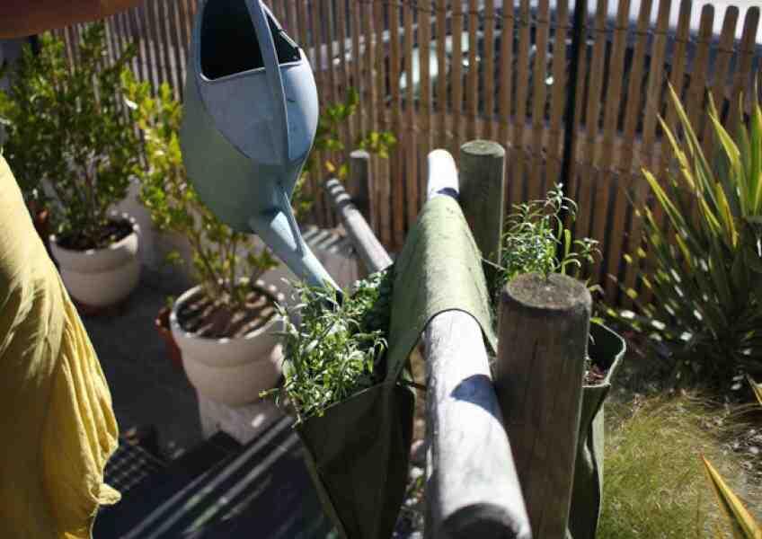 Comment et quand arroser le jardin?