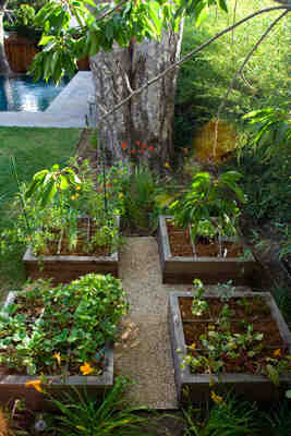 Comment faire de la permaculture dans un petit jardin?