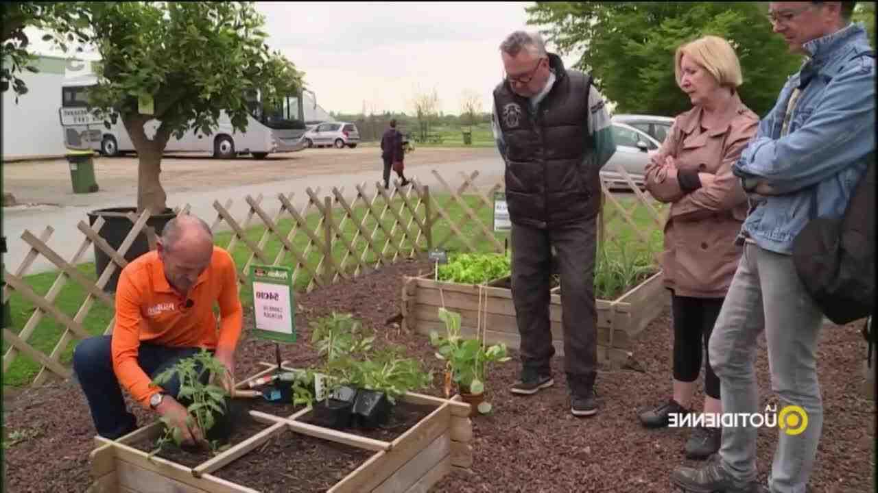 Comment préparer son jardin pour la première fois?