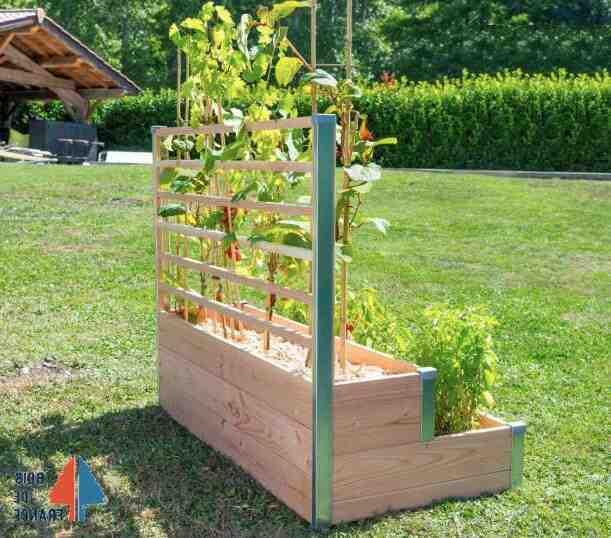Quels légumes sont cultivés dans un petit jardin?